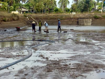 Dùng TCCA 90% xử lý đáy hồ trước khi nuôi tôm